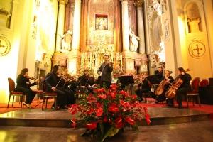 Koncert na rzecz rekonstrukcji organów w Bazylice Świętogórskiej - FRAUENKIRCHENTAG_39