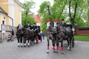 I Festyn Majowy 2008 _7